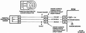 Tps Sensor Wiring Diagram 94 Gm   31 Wiring Diagram Images