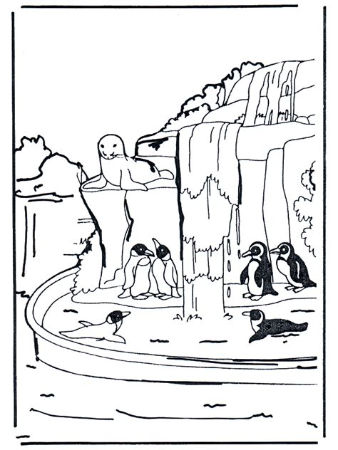 pinguine  malvorlagen zoo