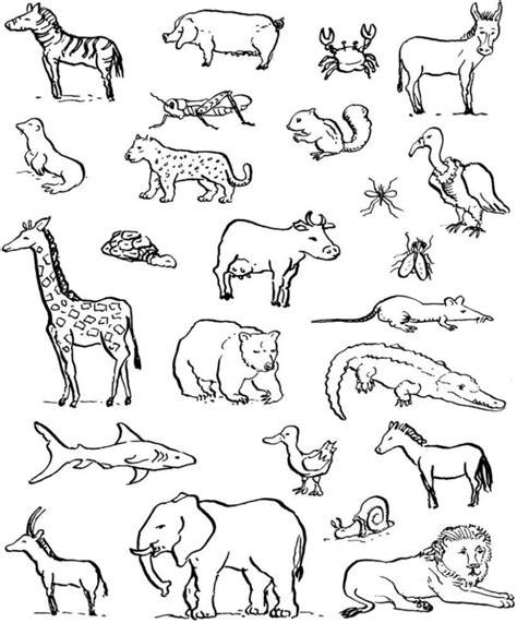 disegni da colorare animali della savana disegni da colorare animali savana img