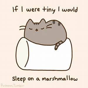 cute cat cartoons | cat, cute, jmv, marshmallow ...
