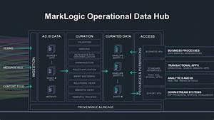 Dhf As An Operational Data Hub