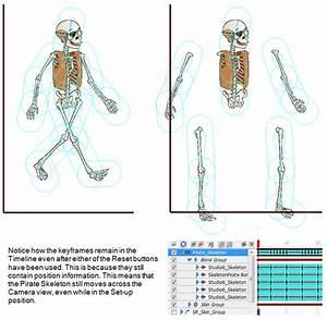 Toon Boom Studio 8 1 Online Help  Skeleton Effect Properties
