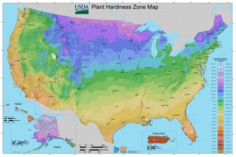 Usda Planting Zones For The Us And Canada  The Old