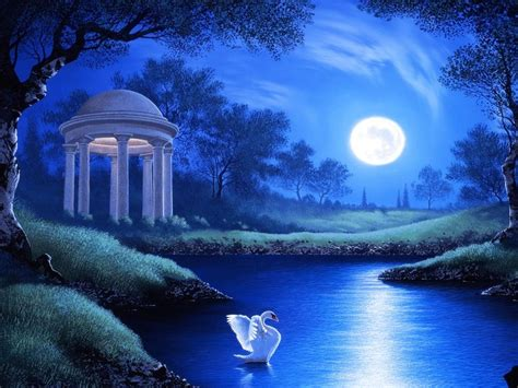 swan lake night full moon trees grass hd wallpaper wallpaperscom