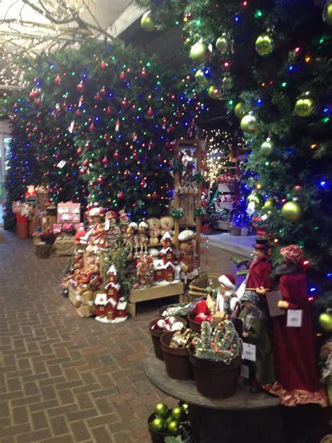 blogmas day  christmas  reuben shaw sons garden