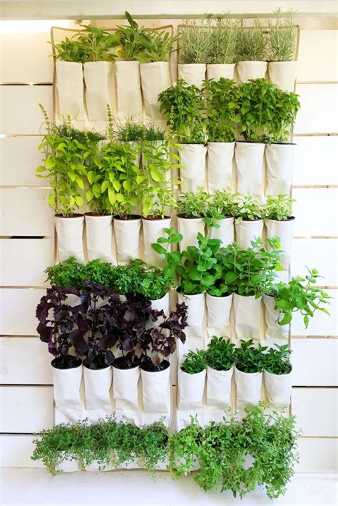 Vertical Hanging Garden by A Hanging Canvas Shoe Organizer Repurposed Into A Vertical