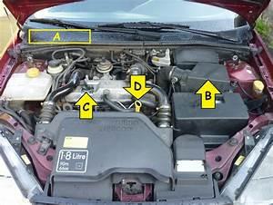 Ford C Max Essence : ford focus vidange moteur remplacement filtre huile air et d 39 habitacle reportage photo ~ Medecine-chirurgie-esthetiques.com Avis de Voitures