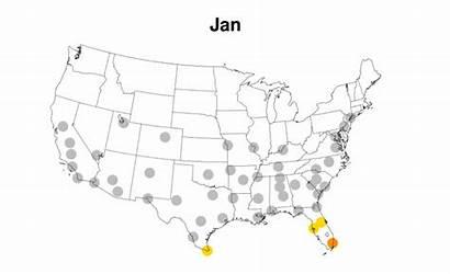 Virus Zika Cities Mosquito Animation Near Spread