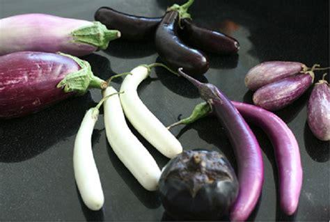 comment cuisiner l esturgeon comment cuisiner l 39 aubergine