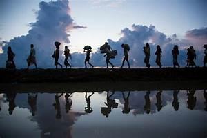 UNHCR - Asylum and Migration  Migration