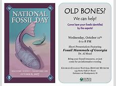 Fossil ID Day in Honor of National Fossil Day
