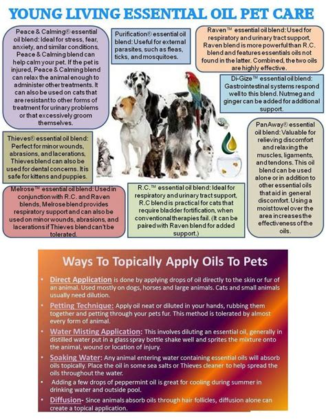 cats essential oils 32 best ess oils for cats images on pinterest young living essential oils young living oils