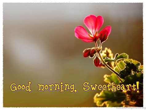 40 Good Morning Sweetheart