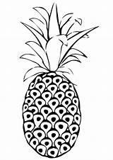 Pineapple Coloring Pages Printable Parentune Worksheets Whitesbelfast Spanish Fruits Credit Save Preschoolers sketch template