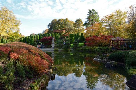 Japanischer Garten In Der Bonner Rheinaue 01112014