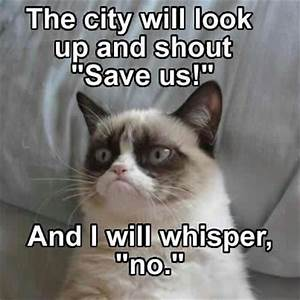Funny Grumpy Cat Quotes - Pictures Worth Sharing! | Pets World