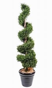 Boule De Buis : boule de buis artificiel botanic photos de magnolisafleur ~ Melissatoandfro.com Idées de Décoration