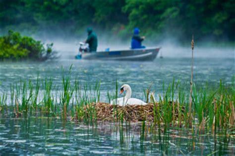 Hamlin Lake Boat Launch by Hamlin Lake Hamlin Lake Fishing Reports