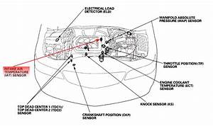 01 Accord Engine Wiring Harness Diagram