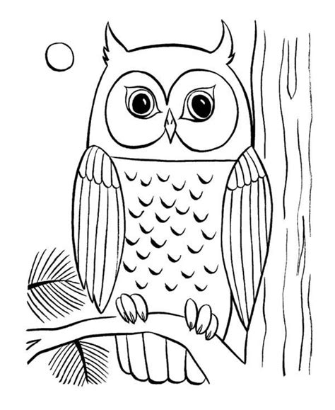 coloring pages  owls  print owl coloring page
