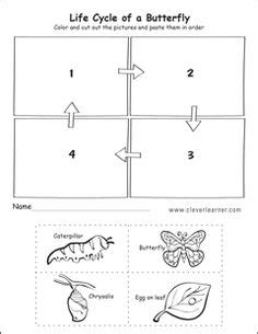 plant life cycle  grade worksheet science lab