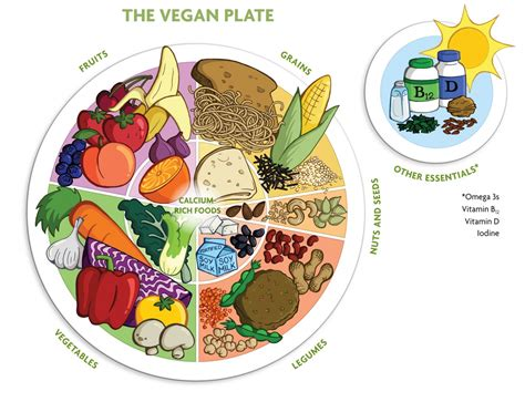 nutrition overview the vegan society