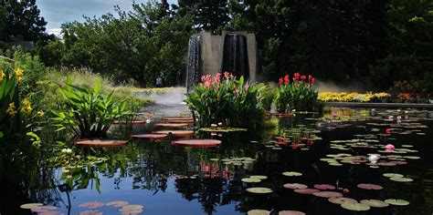 denver botanic gardens denver botanic gardens american gardens association
