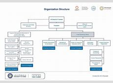 Organization Structure University of Dubai