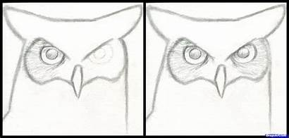 Owl Draw Horned Step Drawing Easy Drawings