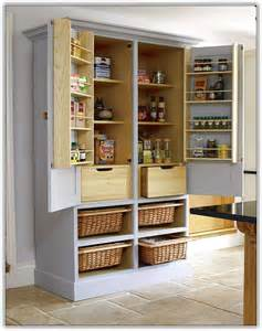 pantry cabinet ideas kitchen freestanding pantry cabinet uk home design ideas