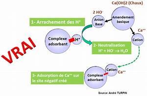 Ph Du Sol : faux le calcium n a pas d action sur le ph ~ Melissatoandfro.com Idées de Décoration