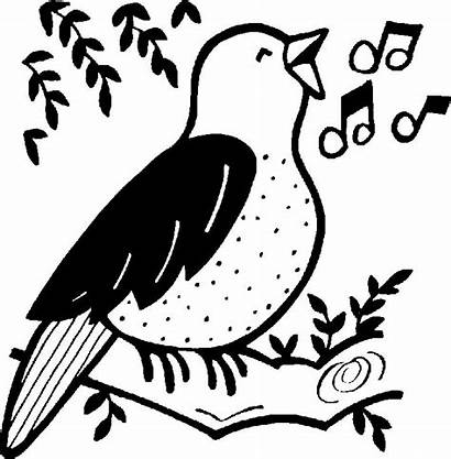 Singing Bird Clipart Song Sing Clip Cliparts