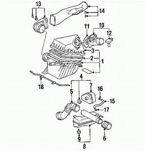 Wiring Diagram For 1999 Toyota Tacoma