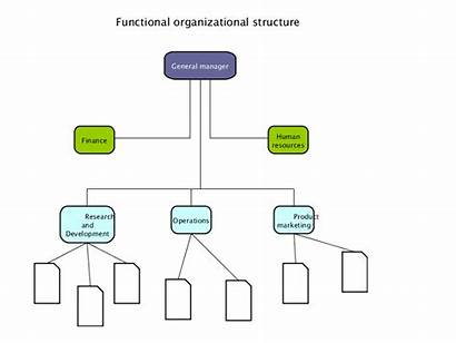 Functional Structure Organizational Type Svg