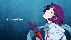 Bakemonogatari, Blue, Eyes, Blush, Gloves, Monogatari, Series, Purple, Hair, Scarf, Senjougahara, Hitagi