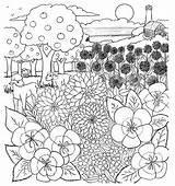 Coloring Contest April Santa Cruz sketch template