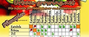 Welche Pflanzen Vertragen Sich Tabelle : der ultimative pflanzkalender aussaat erntezeitpunkt ~ Lizthompson.info Haus und Dekorationen