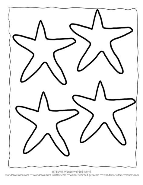 starfish template starfish clipart for