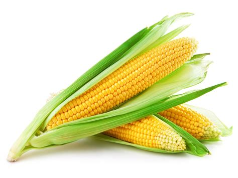 mais cuisine corn recipe a rich succulent