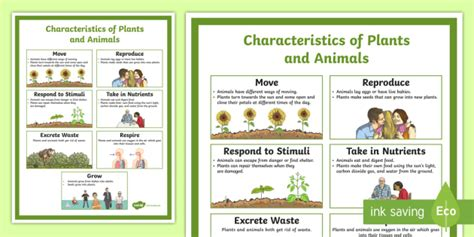 characteristics of plants and animals poster science biology third