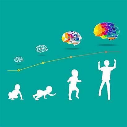 Development Brain Child Clip Vector Illustrations Illustration