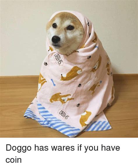 search smol doggo memes  meme