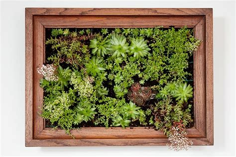 How To Make Vertical Garden Wall by How To Make A Vertical Garden Project Ideas Vertical