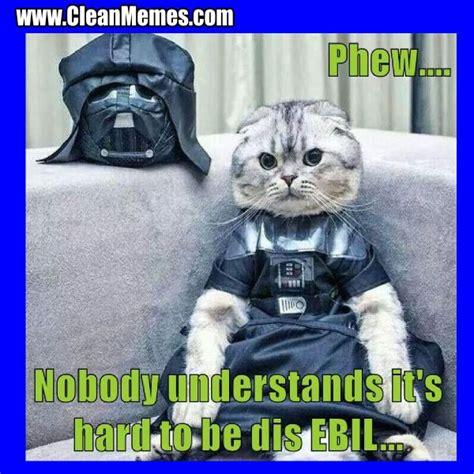 Funny Cat Memes Clean - cat memes clean memes the best the most online page 2 truly me pinterest cat memes