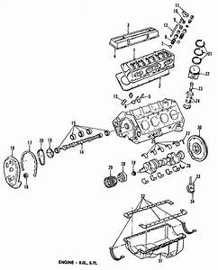 Chevrolet G20 Intake Valve  Camino  Bearings  Models