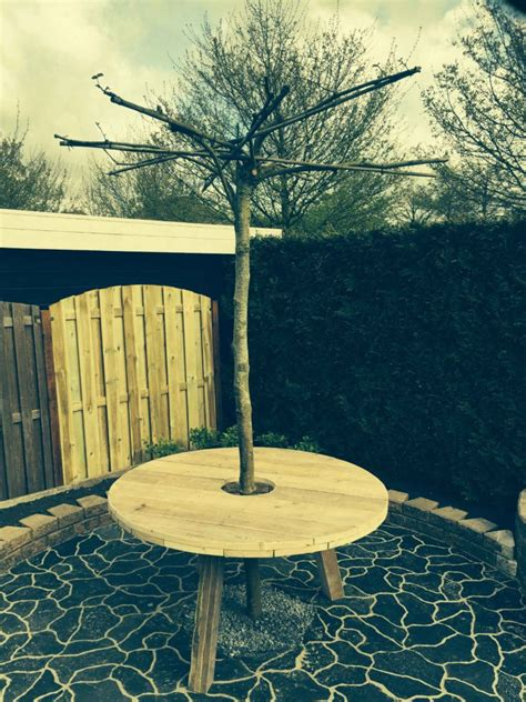 boom tafel tafel om boom brouwerijdehogestins