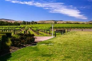 Barossa, Valley, In, South, Australia, Australien