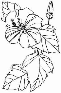 Free Printable Hibiscus Coloring Pages For Kids