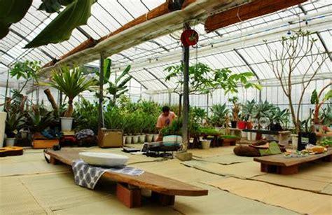 indoor grow room s indoor garden design portland