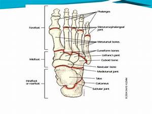 Foot Pain Problems
